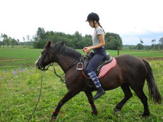 Līdzsvaru treniņš Liene Zāģere ar Zuzi