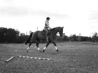 Laura Krastiņa treniņā ar Askel